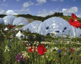 Eden-project-web