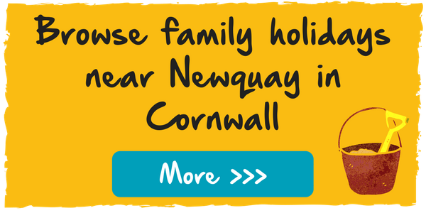 browse family holidays near Newquay in Cornwall