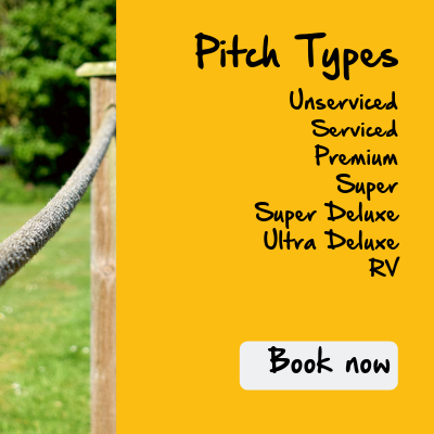 Monkey Tree pitch types camping page