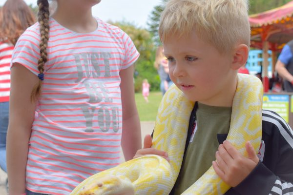 Party in the Park 2019 child with Mark's Ark snake
